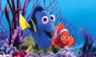 «Finding Nemo» erhält eine Fortsetzung