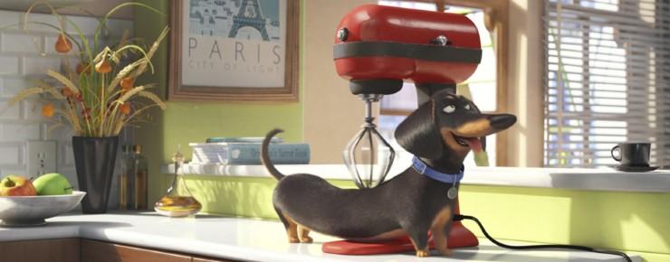 Trailer: The Secret Life of Pets