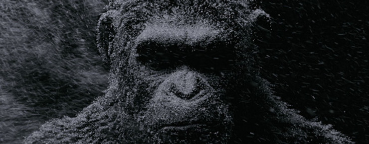 Trailer: «War for the Planet of the Apes»