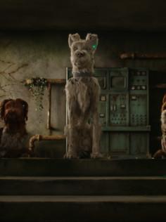 #Berlinale2018: «Isle of Dogs» von Wes Anderson eröffnet das Festival