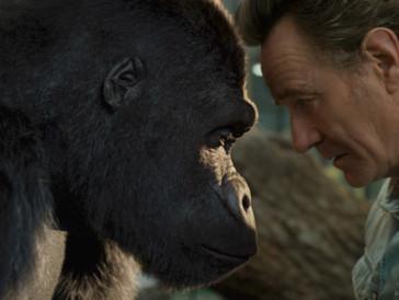 «Der einzig wahre Ivan»: Ein handzahmer Gorilla neu auf Disney+