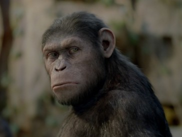 Zum internationalen Affentag: 3 affenstarke Filme