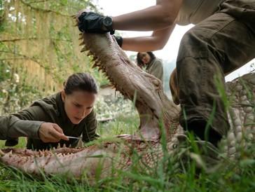 Netflix-Tipp «Annihilation»: Natalie Portman auf Monster-Mission