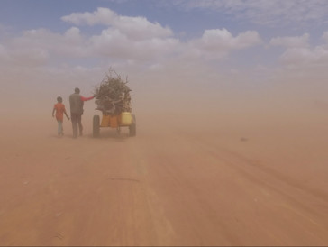Un film qui fait le tour du monde - «Human Flow»