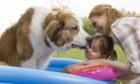 Bilder: Bailey – Ein Hund kehrt zurück