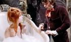 HALLOWEEN - Les Vampires de Polanski