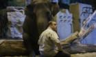 Bilder: Der Zoowärter