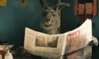 Pictures: Die Känguru-Chroniken