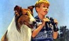 «Lassie» – die 2006er-Version