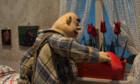 14. Internationale Kurzfilmtage Winterthur