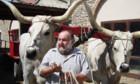 A passo di bove – Eine Ochsentour