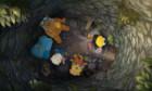 Photos: Der kleine Rabe Socke 3 – Die Suche nach dem verlorenen Schatz