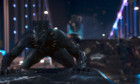 Pictures: Black Panther