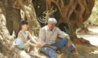 Bilder: El olivo