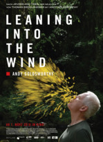 Leaning Into the Wind