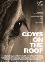 Vaches sur le toit