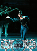 Les Ballets du Bolchoi Schwanensee