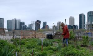Pictures: Push - Für das Grundrecht auf Wohnen