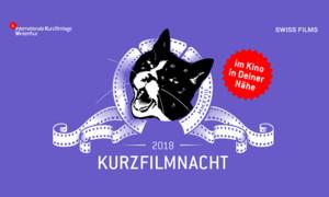 16. Kurzfilmnacht-Tour: Zürich