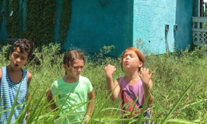 Bilder: The Florida Project