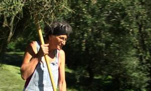 Frauenbauer - Schweizer Bäuerinnen im 21.Jahrhundert