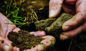 Unser Boden, unser Erbe