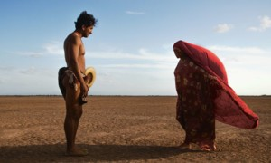 Pictures: Birds of Passage