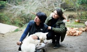 Photos: Voyage à Yoshino