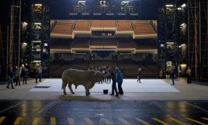 La Chronique de Theo – L'opéra de Paris (Vidéo)