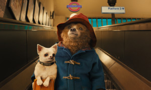 Photos: Paddington