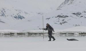 Das Eis brechen im Hohen Norden