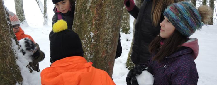 Trailer: Chroniques jurassiennes - L'homme et la forêt